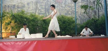 Concierto-danza61-1024x705